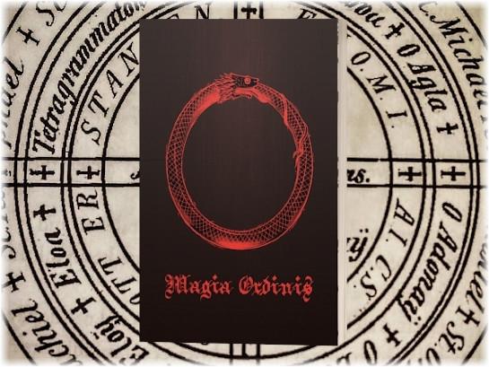 Magia Ordinis, La Magie de l'Ordre